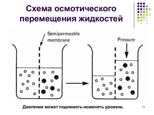 Схема осмотического