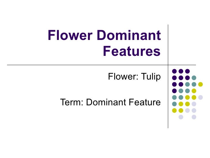 Flower Dominant Features Flower: Tulip Term: Dominant Feature