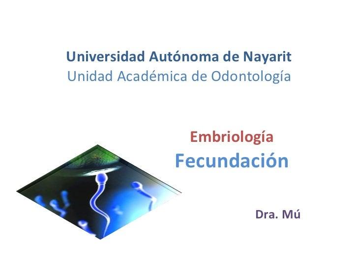 Universidad Autónoma de Nayarit Unidad Académica de Odontología Embriología Fecundación Dra. Mú