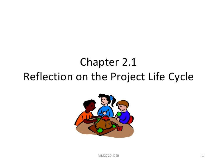 Chapter 2.1 Reflection on the Project Life Cycle MM2720, DEB