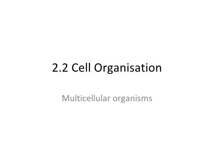 2.2 Cell Organisation Multicellular organisms