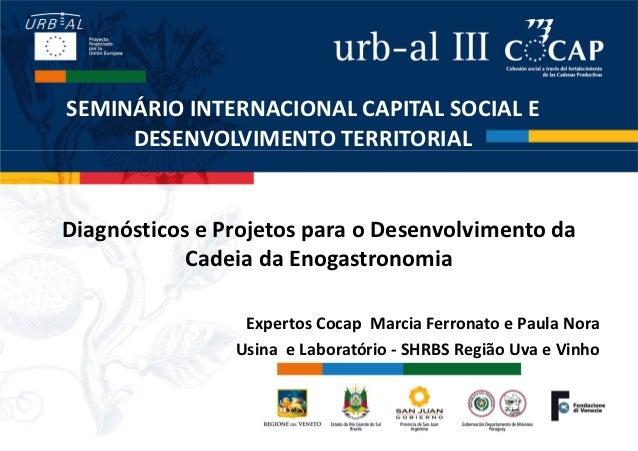 SEMINÁRIO INTERNACIONAL CAPITAL SOCIAL E     DESENVOLVIMENTO TERRITORIALDiagnósticos e Projetos para o Desenvolvimento da ...