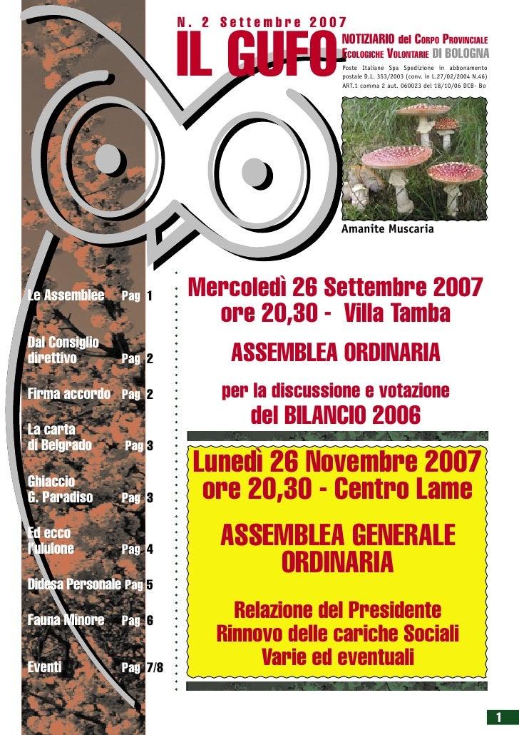 Gufo2007 02