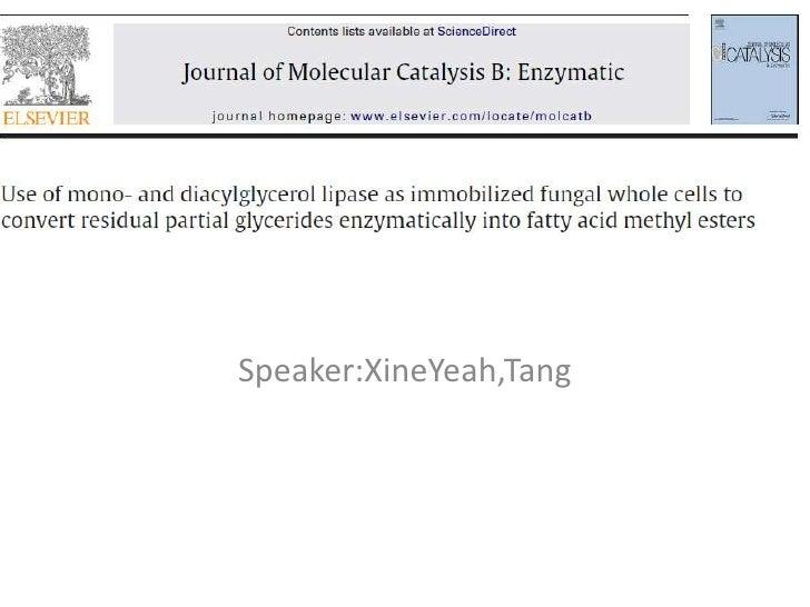 Speaker:XineYeah,Tang<br />