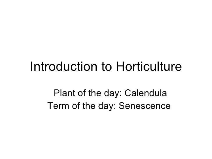 Introduction to Horticulture Plant of the day: Calendula Term of the day: Senescence