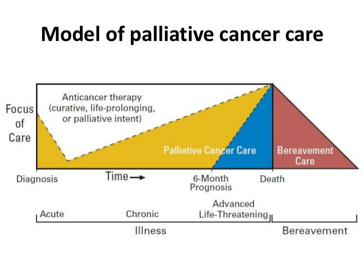 breast cancer and palliative care issues Coping is an individual's ability to deal with the physical and psychological  problems associated with the breast cancer process family support.