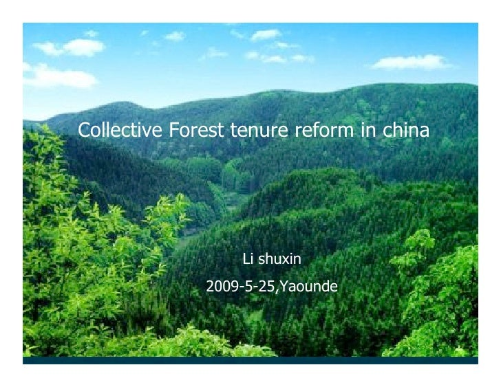 Li Shuxin: Collective Forest Tenure Reform In China