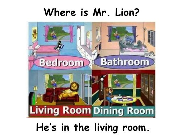Where is Mr. Lion?He's in the living room.