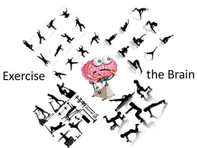 Exercise the Brain