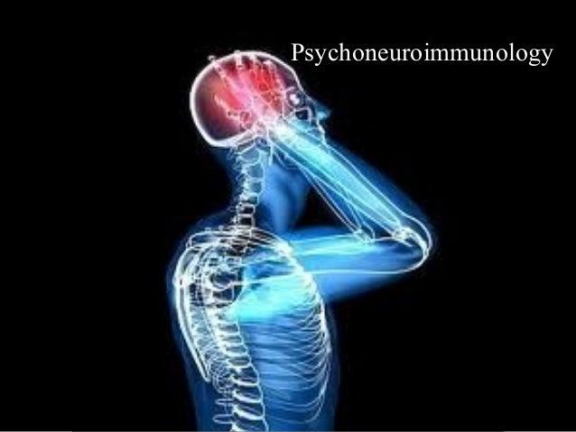 2.9 2013 clrm brain studies