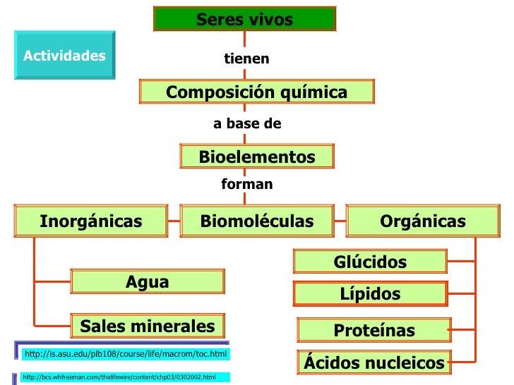 Biomoleculas