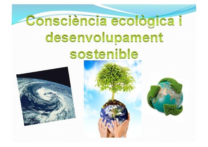 Fins a fa pocs milions d'anys, tot el que els éssers vius produïen era biodegradable, s'assimilava al medi ambient i, llun...