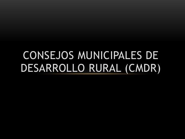 ConsejosMunicipales de Desarrollo Rural (CMDR)<br />