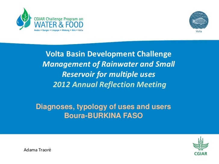 Diagnoses, typology of uses and users Boura-BURKINA FASO