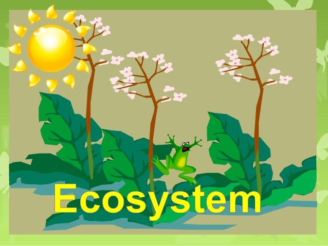 Dynamics of EcosystemThe various components of the  ecosystem constitute an interacting  system. They are connected by ene...