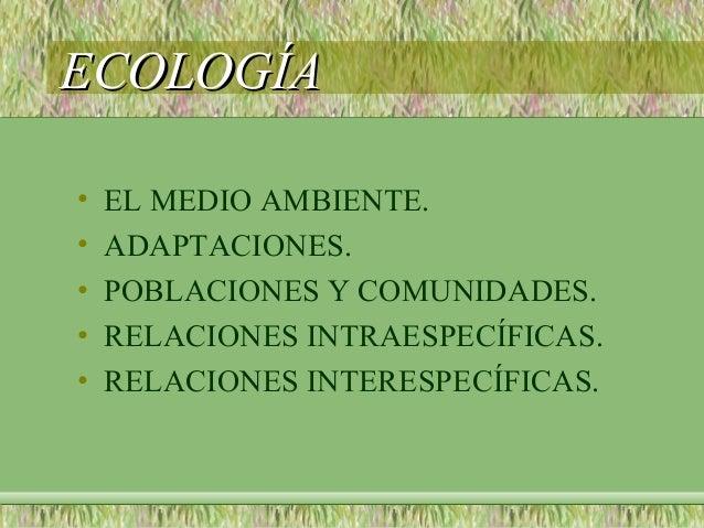 ECOLOGÍAECOLOGÍA• EL MEDIO AMBIENTE.• ADAPTACIONES.• POBLACIONES Y COMUNIDADES.• RELACIONES INTRAESPECÍFICAS.• RELACIONES ...