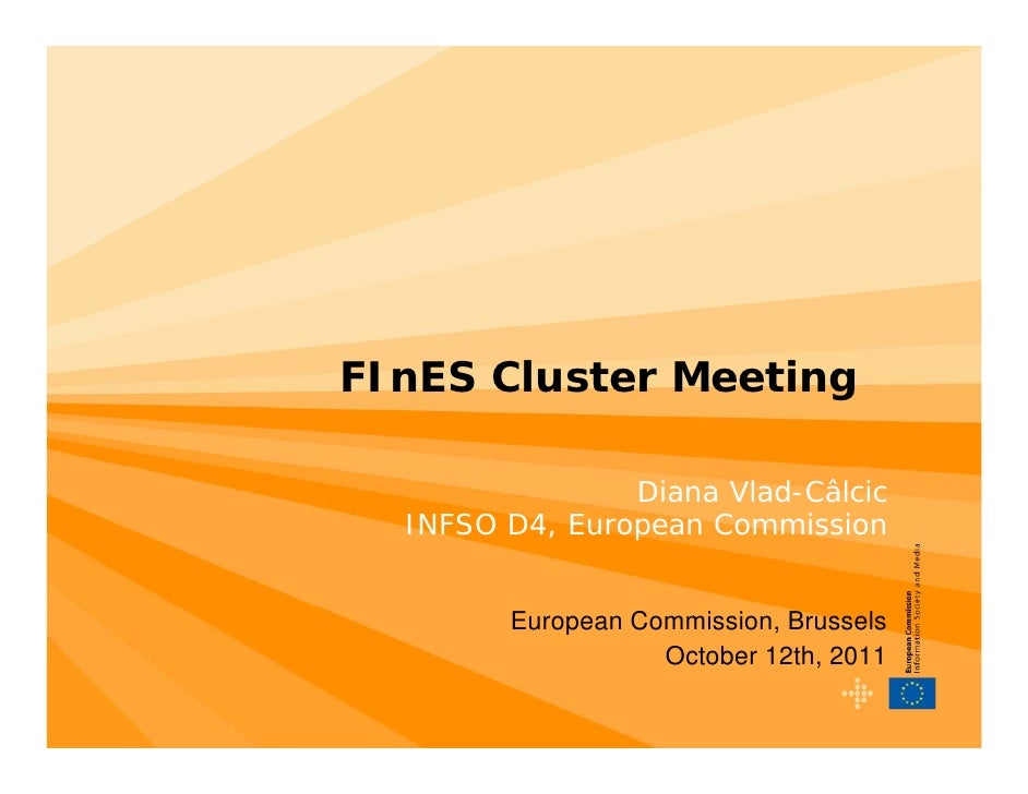 FInES Cluster Meeting                Diana Vlad-Câlcic  INFSO D4, European Commission        European Commission, Brussels...