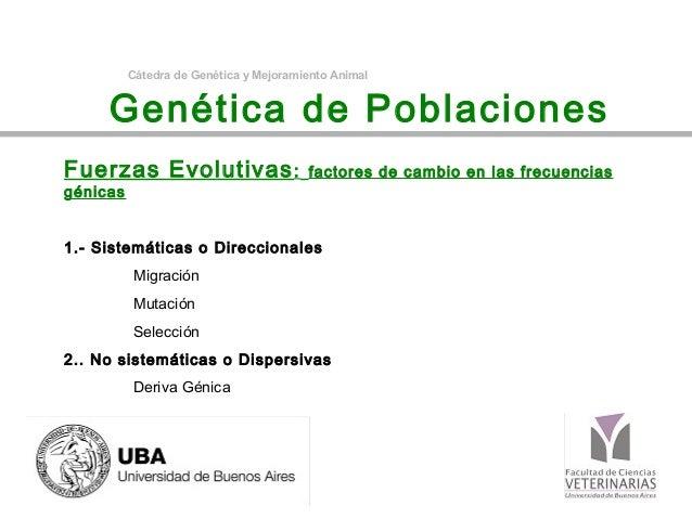 Cátedra de Genética y Mejoramiento Animal     Genética de PoblacionesFuerzas Evolutivas :                    factores de c...