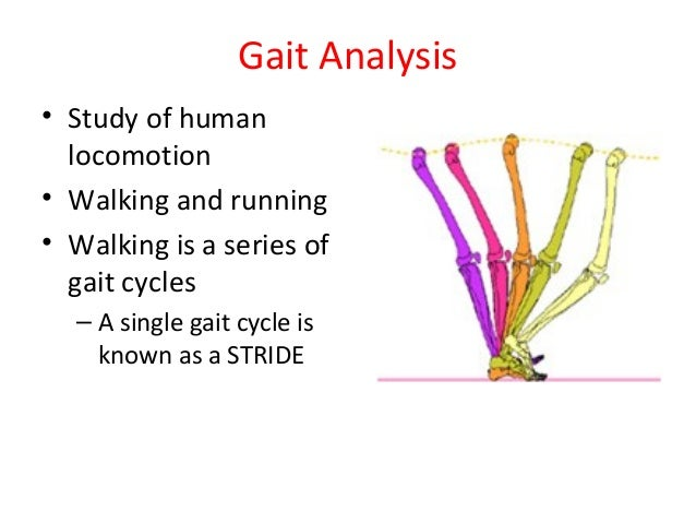 human gait analysis during walk and View human gait analysis research papers on academiaedu for free subjects had a shorter stance phase and longer swing phase during the crutch walking gait cycle.