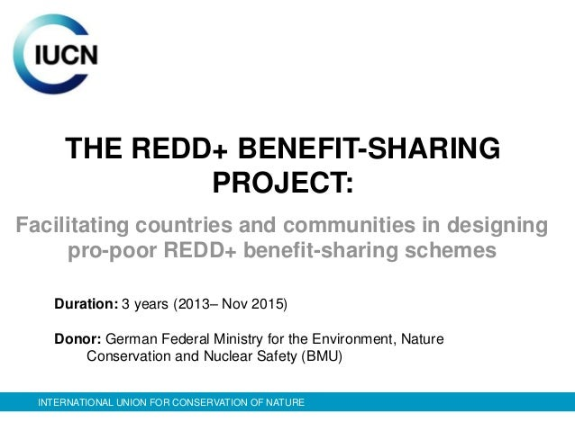 THE REDD+ BENEFIT-SHARING              PROJECT:Facilitating countries and communities in designing     pro-poor REDD+ bene...