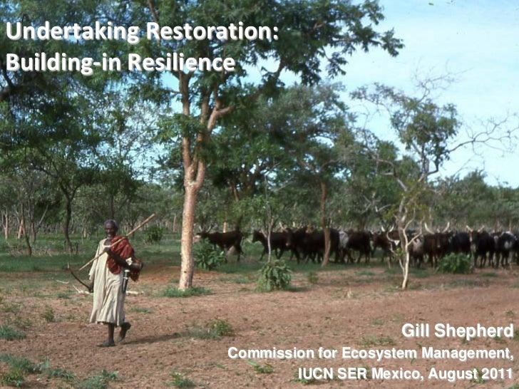 Undertaking Restoration: Building-in Resilience