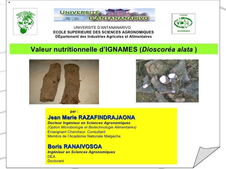 UNIVERSITE D'ANTANANARIVO ECOLE SUPERIEURE DES SCIENCES AGRONOMIQUES Département des Industries Agricoles et Alimentaires ...