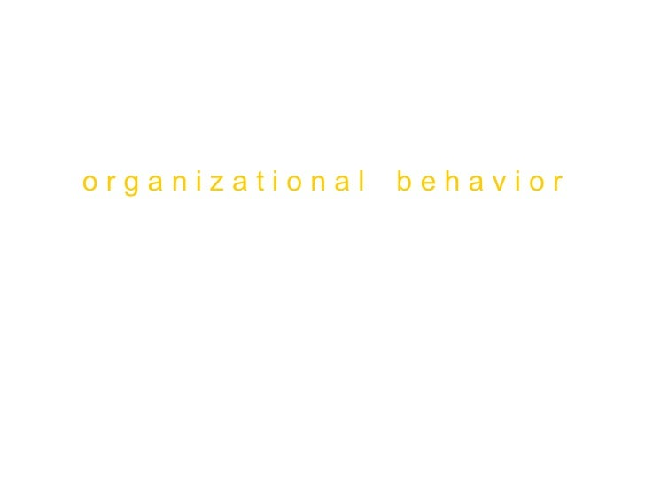 o r g a n i z a t i o n a l  b e h a v i o r Foundations of Individual Behavior