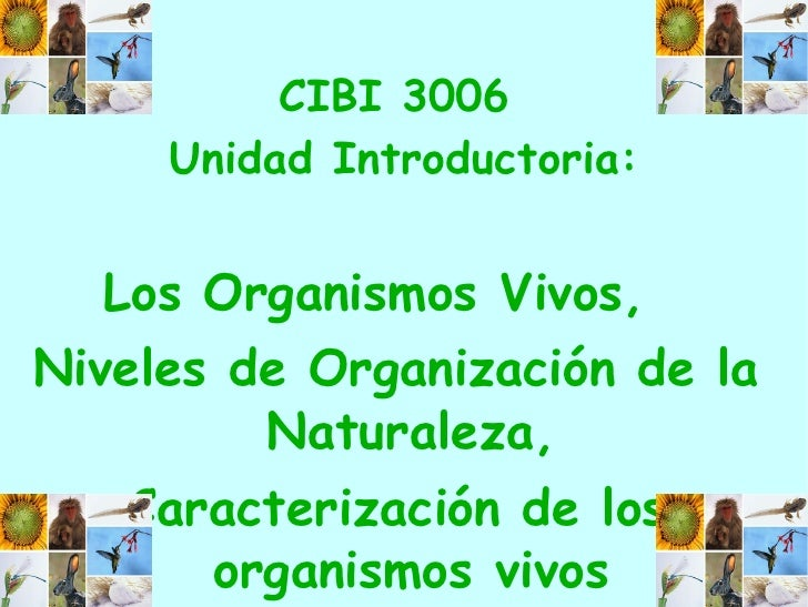 CIBI 3006  Unidad Introductoria: Los Organismos Vivos,  Niveles de Organización de la Naturaleza, Caracterización de los o...