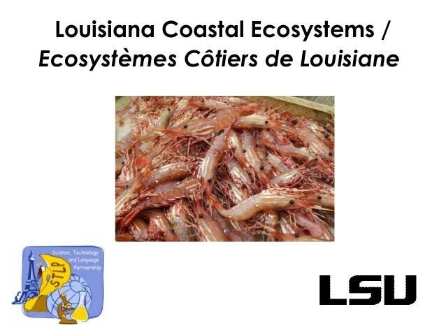 Louisiana Coastal Ecosystems / Ecosystèmes Côtiers de Louisiane