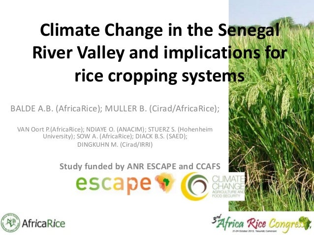 Climate Change in the Senegal River Valley and implications for rice cropping systems BALDE A.B. (AfricaRice); MULLER B. (...