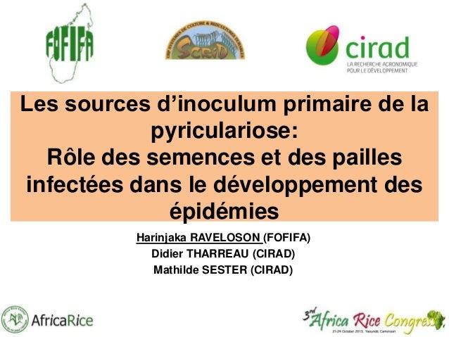 Les sources d'inoculum primaire de la pyriculariose: Rôle des semences et des pailles infectées dans le développement des ...