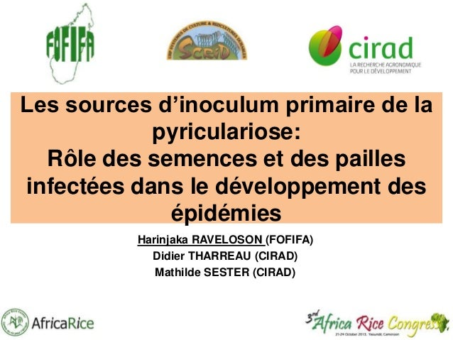 Th2_Les sources d'inoculum primaire de la pyriculariose
