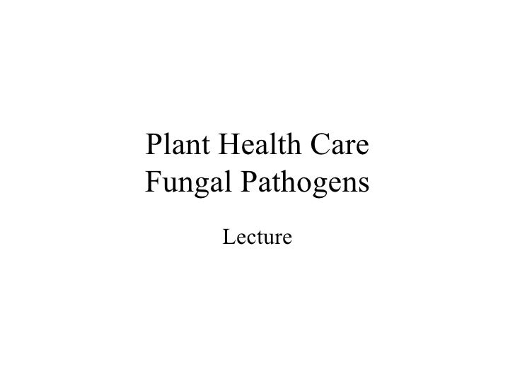 Plant Health Care Fungal Pathogens Lecture