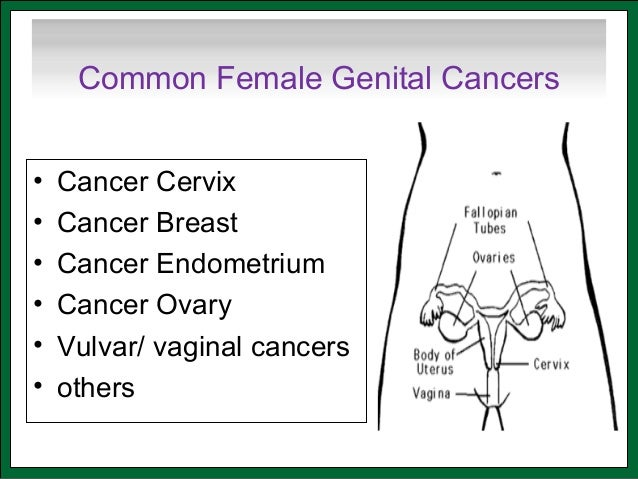 Vulvar Cancer Ribbon Color | 638 x 479 jpeg 62kB