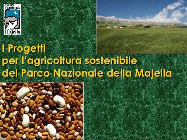 I Progettiper l'agricoltura sostenibiledel Parco Nazionale della Majella