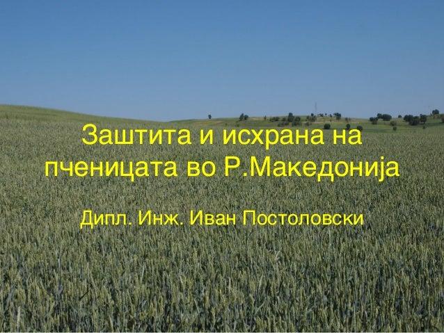 Za{tita i ishrana nap~enicata vo R.MakedonijaDipl. In`. Ivan Postolovski