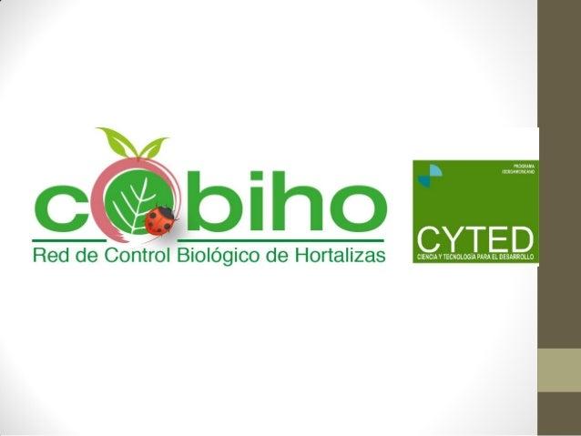 ImplementacióndeEnemigosNaturalesparaelcontrolde plagasyenfermedadesencultivoshortícolasen Iberoamérica CYTED PROGRAMA IBE...