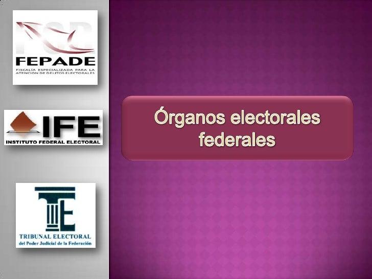 INSTITUTO FEDERAL            TRIBUNAL ELECTORAL DEL    FISCALÍA ESPECIALIZADA       ELECTORAL                  PODER JUDIC...