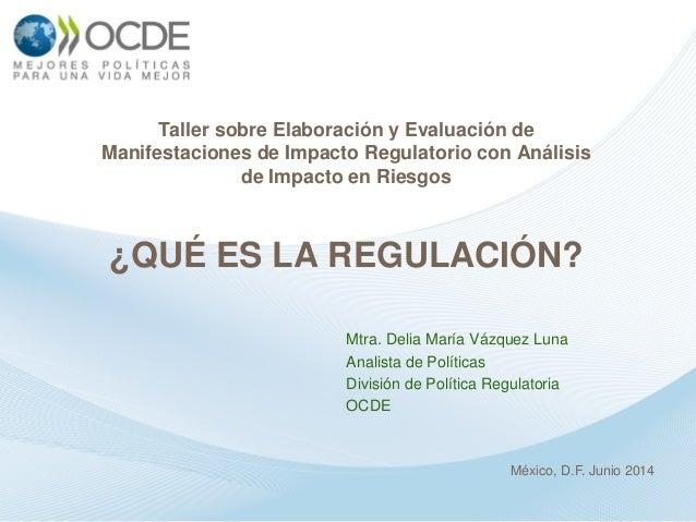 ¿Qué es la regulación?, Mtra. Delia María Vázquez Luna