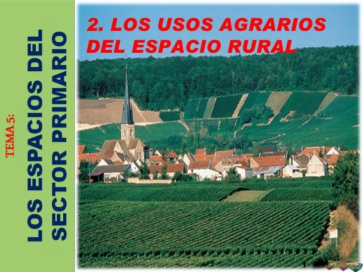 2. usos agrarios del espacio rural