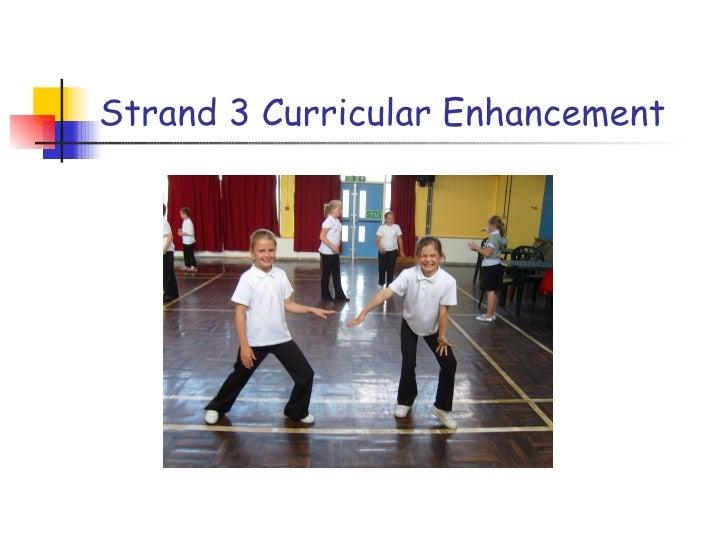 Strand 3 Curricular Enhancement