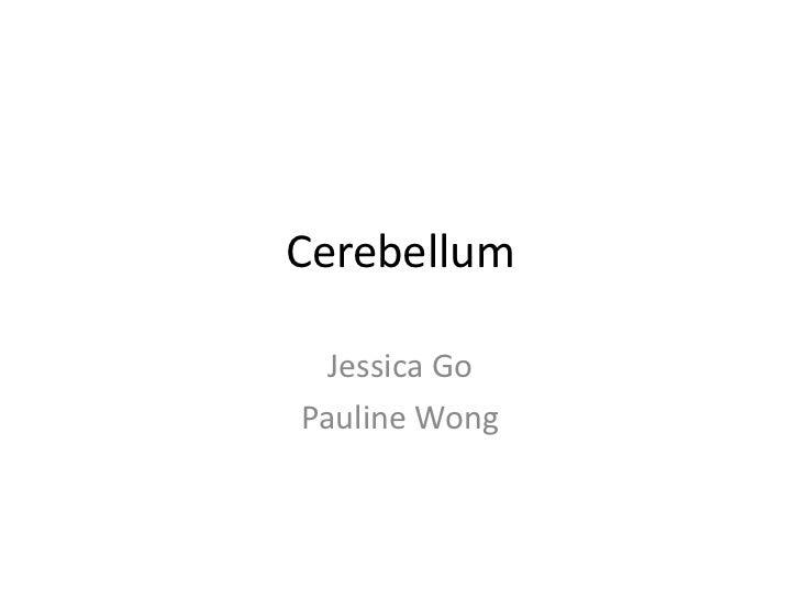 Cerebellum  Jessica GoPauline Wong