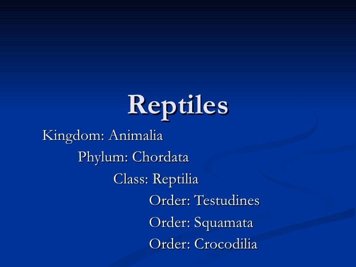Reptiles Kingdom: Animalia Phylum: Chordata Class: Reptilia Order: Testudines Order: Squamata Order: Crocodilia