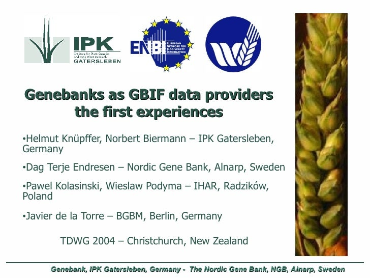 Genebanks as GBIF data providers the first experiences <ul><li>Helmut Knüpffer, Norbert Biermann – IPK Gatersleben, German...
