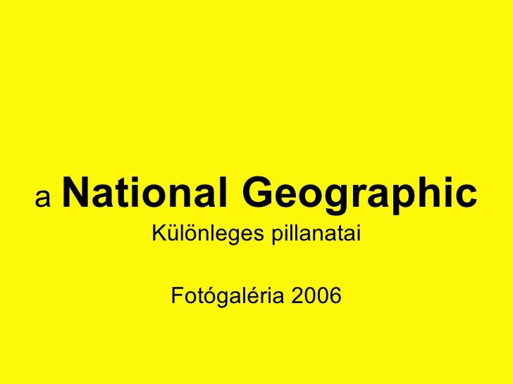 a  National Geographic Különleges pillanatai Fotógaléria 2006