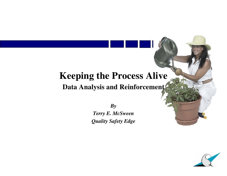 Keeping the Process Alive: Data Analysis and Reinforcement for BBS