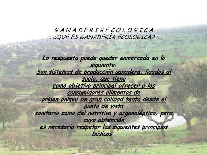GANADERIAECOLOGICA    .:: ¿QUE ES GANADERÍA ECOLÓGICA? ::.   La respuesta puede quedar enmarcada en lo                    ...