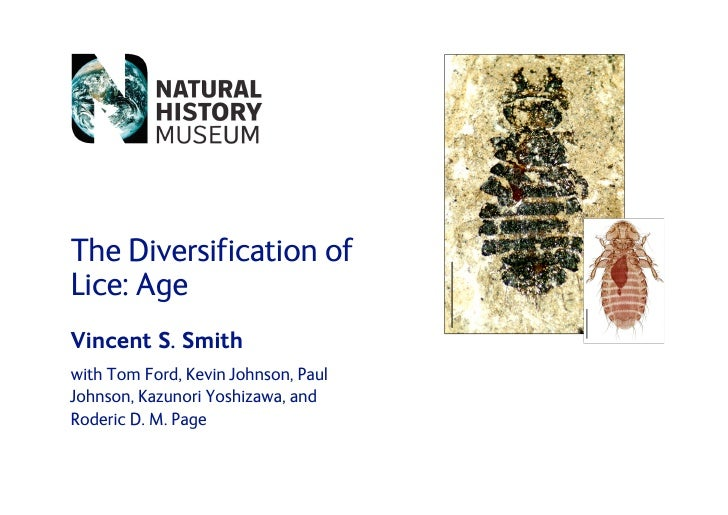 The Diversification of Lice: Age Vincent S. Smith with Tom Ford, Kevin Johnson, Paul Johnson, Kazunori Yoshizawa, and Rode...