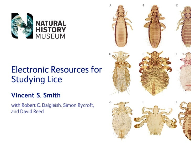 Electronic Resources for Studying Lice Vincent S. Smith with Robert C. Dalgleish, Simon Rycroft, and David Reed