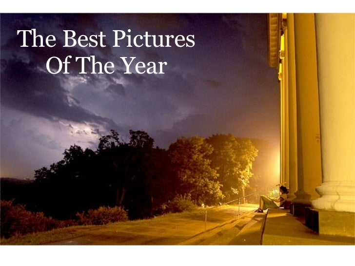 The Best Pictures Of The Year